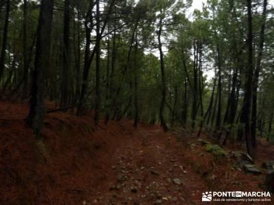 Valle de Iruelas - Pozo de nieve - Cerro de la Encinilla;senderos gran recorrido senderos mallorca
